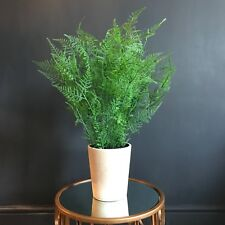 Tall Potted Artificial Fern Bush. Realistic Green Faux Silk Houseplant Plant Pot