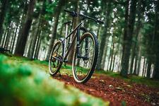 New WITTSON Bestia Boost Titanium 29er MTB Frame Set mountain bike
