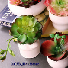 Green Artificial Succulents Plants for Home Garden Wedding Decoration Plants