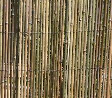 BAMBUSMATTE 1,5m x 5m Sichtschutzmatte Sichtschutz Bambus -Zaun geschnitten