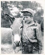 ÂNE c. 1950 - Jeune Garçon et sa Mule Mulet Baudet  Grand Format - CH 78