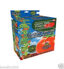 TGIANT06 Gardener's Choice Giant Tomato Tree As Seen On TV 8 ft. 60 lb. Box NEW
