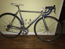 Serotta CSI 50cm Campy Record Bike