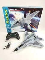 UK F22 Jet Fighter Wing Remote Control Aircraft RC Airplane Plane Model Toy 2.4G