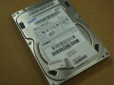 """Samsung Spinpoint SP0411N 40GB 3.5"""" IDE Hard Drive HDD TESTED [6 available]"""