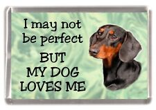 """Dachshund Dog Fridge Magnet No.3.  """"I may not be perfect BUT ....."""" by Starprint"""