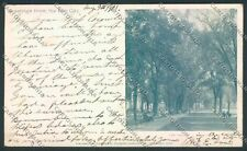 USA Elm City postcard cartolina EE3336