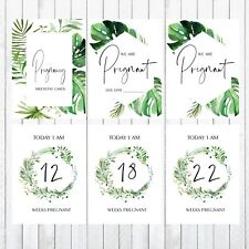 Pregnancy Milestone Cards, 4x6 Photo Prop, 35 Cards, green, leaves
