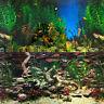 Aquarium Background Double-Sided Repeating Aquarama Shalescape Plants Fish Tank