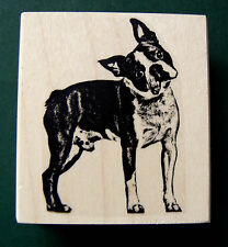 Boston terrier - full body rubber stamp WM Q2