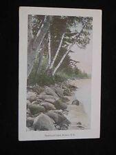 Antique POSTCARD Newfound Lake, BRISTOL, NH. Shoreline Scene, c1915