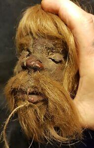 Schrumpfkopf shrunken head tsantsa