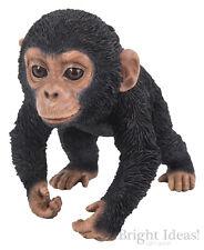 Vivid Arts-Pet Pals Fauna Selvatica Animale Domestico & Chimp BOX-Baby Scimpanze 'in esecuzione