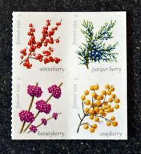 2019USA Forever Winter Berries - Block of 4 From Booklet of 20  Mint  flowers