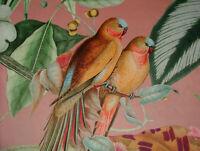 Concha Rosa Caribeño Mono Loro Pájaro Tapicería de Cortina Cojín Terciopelo Tela