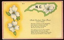 CP  USA  NORTH CAROLINA S STATE FLOWER