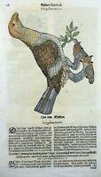 1669 Tetrao Grouse, Nest - Conrad GESNER FOLIO - 2 original WOODCUTS handcolored