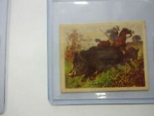 1930 Planters Nut Hunted Animals Wild Boar # 6