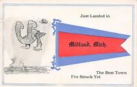 """Just Landed"" in Midland Michigan~Best Town Struck~Man Falls From Sky~Pennant PC"