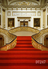 Palace Carpet Stair Vinyl photography Backdrop Background Studio Props 10X10FT