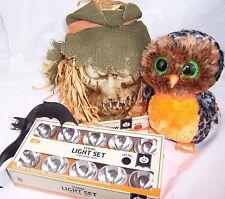 Light Up Halloween Talking Scarecrow,Strobe Spooky Music,Midnight 10in Owl,Bat