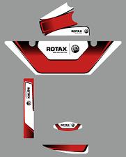 NEW DESIGN Birel ART EUROPEAN STYLE ROTAX RADIATOR STICKER KIT - KARTING