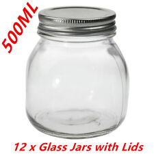 Bulk 500ml Glass Jars Silver Lid Conserve Preserving Chutney Sauce Storage Jar W