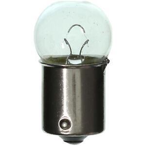 License Plate Light Bulb-Light Bulb Wagner Lighting BP67