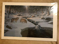 "Bruce Dumas Art ""Rocky River Wolves"" Giclee Print Wolf Museum Art Wildlife Print"