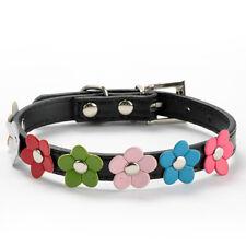 Flower dog collar  medium dog uk seller fast and free delivery