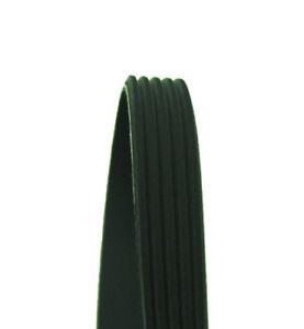 Serpentine Belt-DIESEL Cadna 345K5