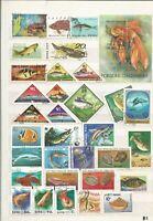 Fische Meerestiere Briefmarken Timbres Sellos Stamps