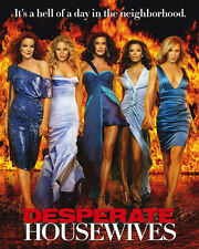 Desperate Housewives [Cast] (30848) 8x10 Photo