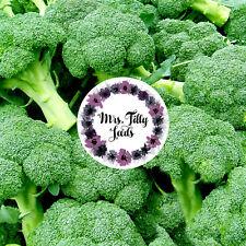 BROKKOLI Broccolisamen 100 Samen alte Sorte aus Italien grün und robust Vitamin