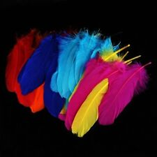 72 Pieces Craft Wild Goose Tail Wing Feather Millinery Mixed Colors 12-20cm ED