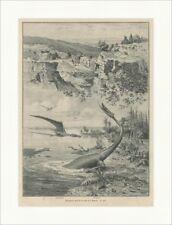 Jurameer und Tiere aus der Urwelt I Pterodactylus Plesiosaurus Holzstich E 22452
