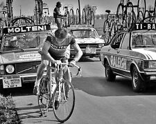 Eddy Merckx Tour de France Cycling Legend #5 10x8 Photo