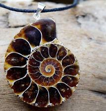 Silber Kettenanhänger Ammonit 4 cm Schnecke Groß Braun Anhänger Natürlich Edel