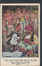 Comic-Postkarte-Genie/Einkommensteuer/Hareem/Frau A9154