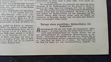 1900 baugewerkszeitung 38/Chicken Hen Chicken Breed Chicken Hutch