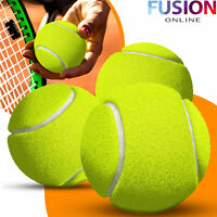 Tennis Balls Ball Games Dog Pet Toy Pets Bouncing Sports Outdoor Games Fun Throw