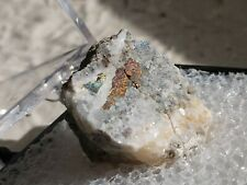 High Grade Gold Ore Brecciated White Quartz/Gold Specimen