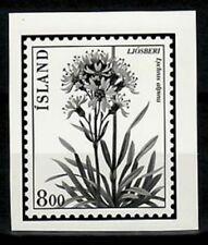 Photo Essay, Iceland Sc568 Flower, Lychnis alpina.