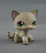 Rare Littlest Pet Shop LPS Tabby Short Hair Cat Green Flower Eyes #483 Girl Toys