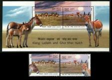 Wild Ass of Ladakh & Kutch Kiang & Ghor Khar, Animals, India 2013 MNH SS+2v