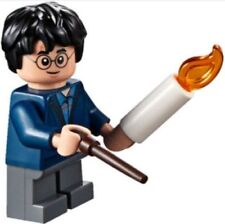 Lego harry potter and the Fantastic Beasts Minifigures Harry Potter 75950