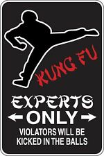 Kung Fu Experts Only Funny Novelty Stickers JDM Euro Sma SM1-470