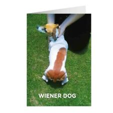 """Animal Humour """"Wiener Dog"""" Greetings Card Birthday Gift Occasion Funny"""