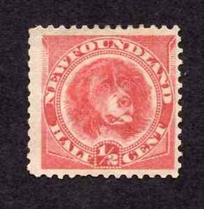 Newfoundland #56 1/2 Cent Rose Red Newfoundland Dog Issue MH