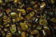 5 Pounds Tumbled Gold Tigers Eye - 'A' Grade - Reiki, Crystal Healing